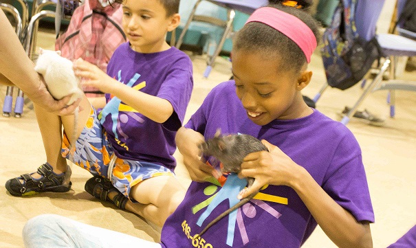 Girl attends DPNCHC Summer Day Camp